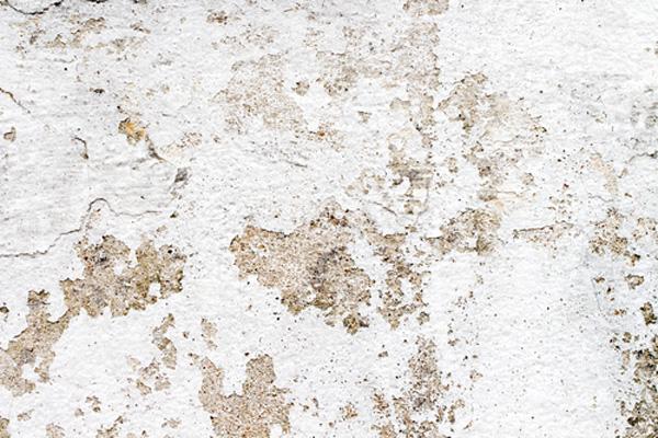 外壁塗膜の剥がれ画像