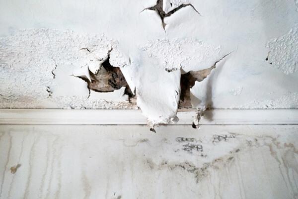 外壁塗装放置
